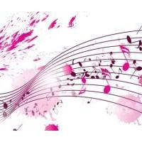 Božično-novoletni koncert harmonikarskega aktiva