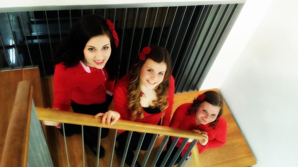 Nastop harmonikarskega tria Amabile