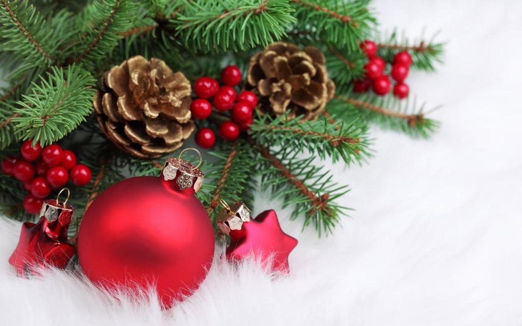 Odpiralni čas med novoletnimi počitnicami