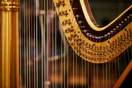 Harfa